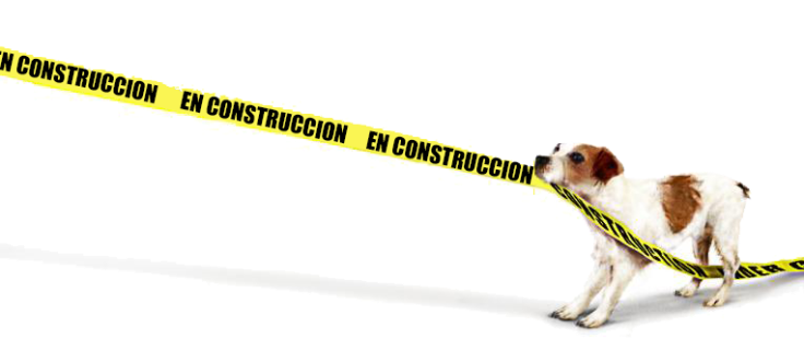 construccion2.png