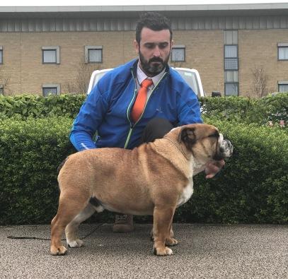 Fat Puppys Packman(1)